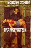 Monster Scenes Frankenstein